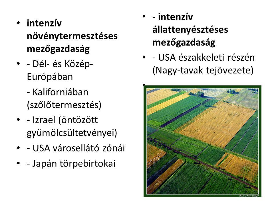 intenzív növénytermesztéses mezőgazdaság - Dél- és Közép- Európában - Kaliforniában (szőlőtermesztés) - Izrael (öntözött gyümölcsültetvényei) - USA vá