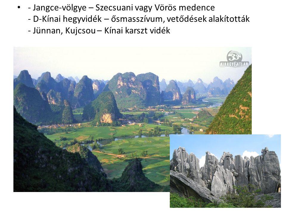 - Jangce-völgye – Szecsuani vagy Vörös medence - D-Kínai hegyvidék – ősmasszívum, vetődések alakították - Jünnan, Kujcsou – Kínai karszt vidék