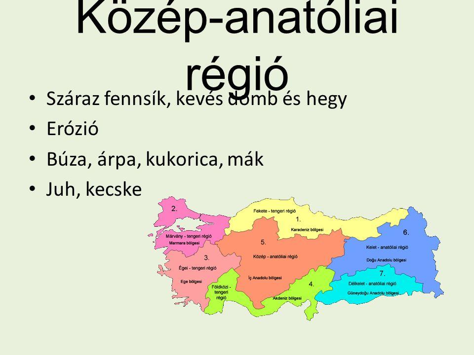 Közép-anatóliai régió Száraz fennsík, kevés domb és hegy Erózió Búza, árpa, kukorica, mák Juh, kecske