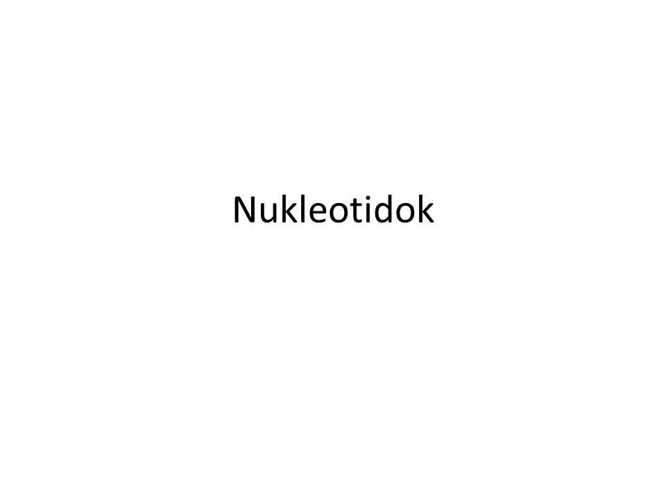 Nukleotidok