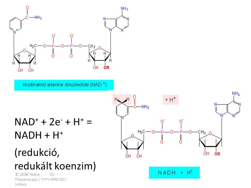 © 2008 Nokia V1- Filename.ppt / YYYY-MM-DD / Initials 15 NAD + + 2e - + H + = NADH + H + (redukció, redukált koenzim)