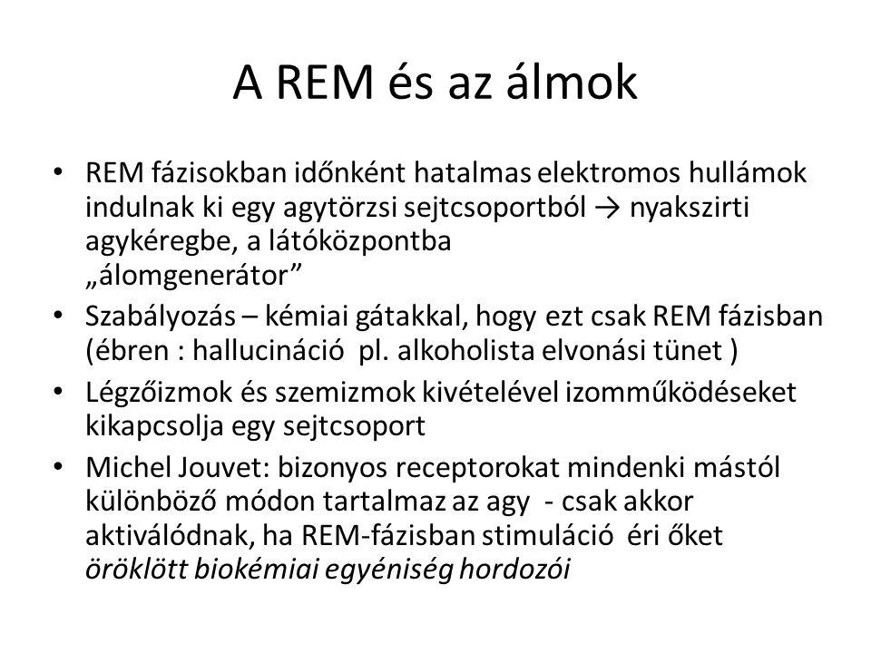 A REM és az álmok REM fázisokban időnként hatalmas elektromos hullámok indulnak ki egy agytörzsi sejtcsoportból → nyakszirti agykéregbe, a látóközpont