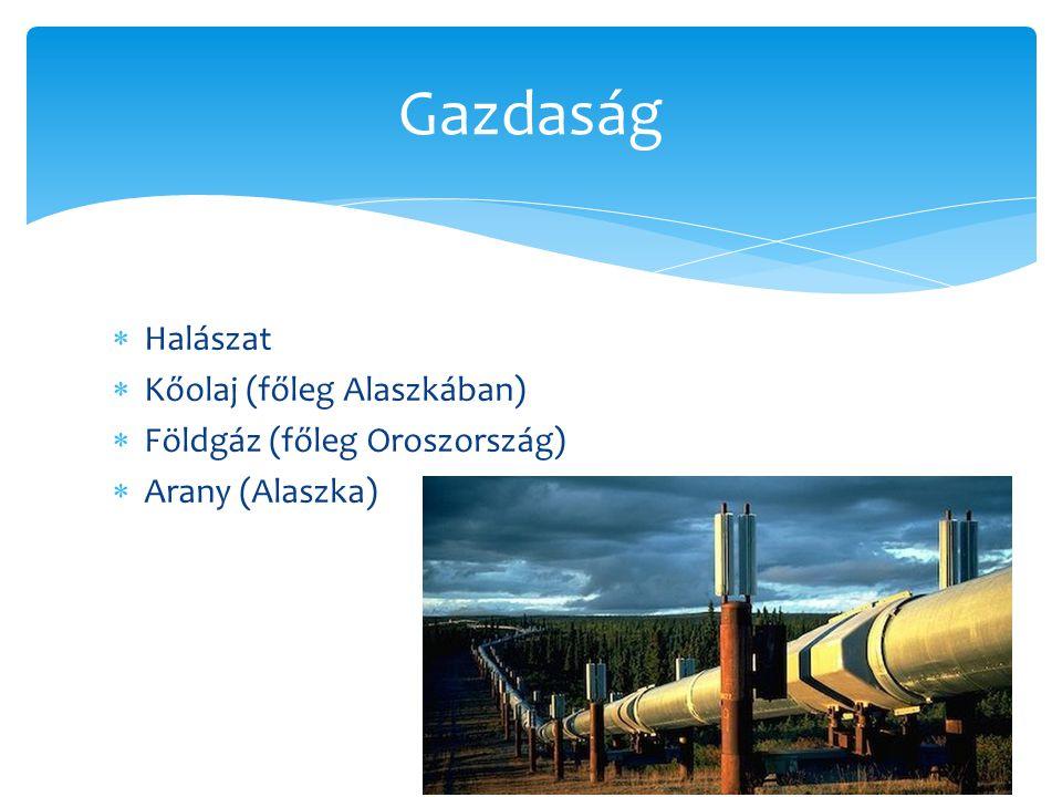  Halászat  Kőolaj (főleg Alaszkában)  Földgáz (főleg Oroszország)  Arany (Alaszka) Gazdaság