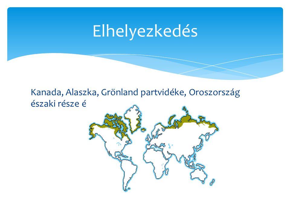 Kanada, Alaszka, Grönland partvidéke, Oroszország északi része és az antarktiszi félsziget Elhelyezkedés