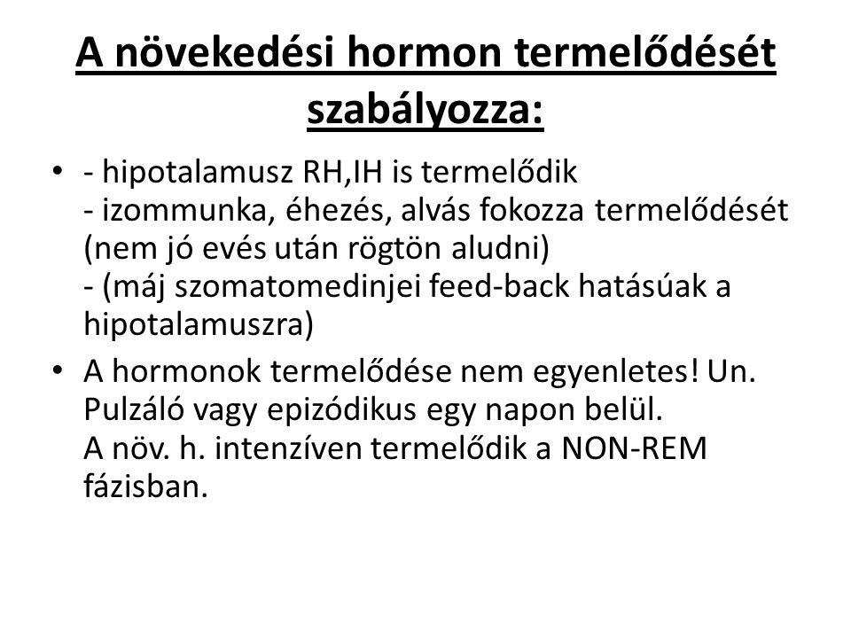 A növekedési hormon termelődését szabályozza: - hipotalamusz RH,IH is termelődik - izommunka, éhezés, alvás fokozza termelődését (nem jó evés után rög