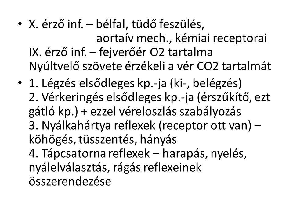 X. érző inf. – bélfal, tüdő feszülés, aortaív mech., kémiai receptorai IX. érző inf. – fejverőér O2 tartalma Nyúltvelő szövete érzékeli a vér CO2 tart