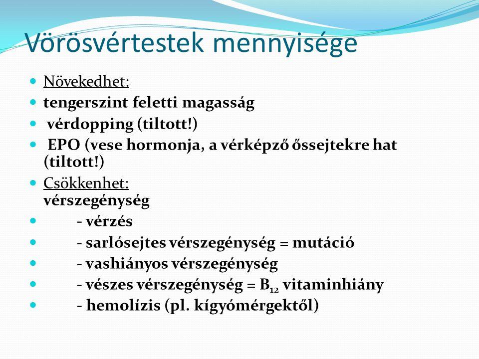 Vörösvértestek mennyisége Növekedhet: tengerszint feletti magasság vérdopping (tiltott!) EPO (vese hormonja, a vérképző őssejtekre hat (tiltott!) Csök