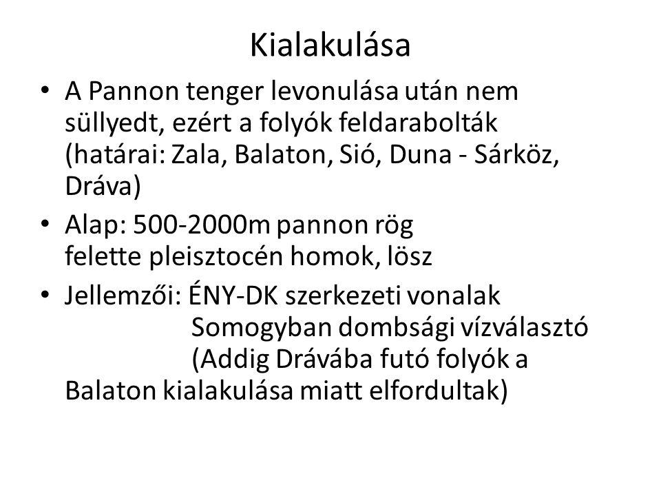 Kialakulása A Pannon tenger levonulása után nem süllyedt, ezért a folyók feldarabolták (határai: Zala, Balaton, Sió, Duna - Sárköz, Dráva) Alap: 500-2