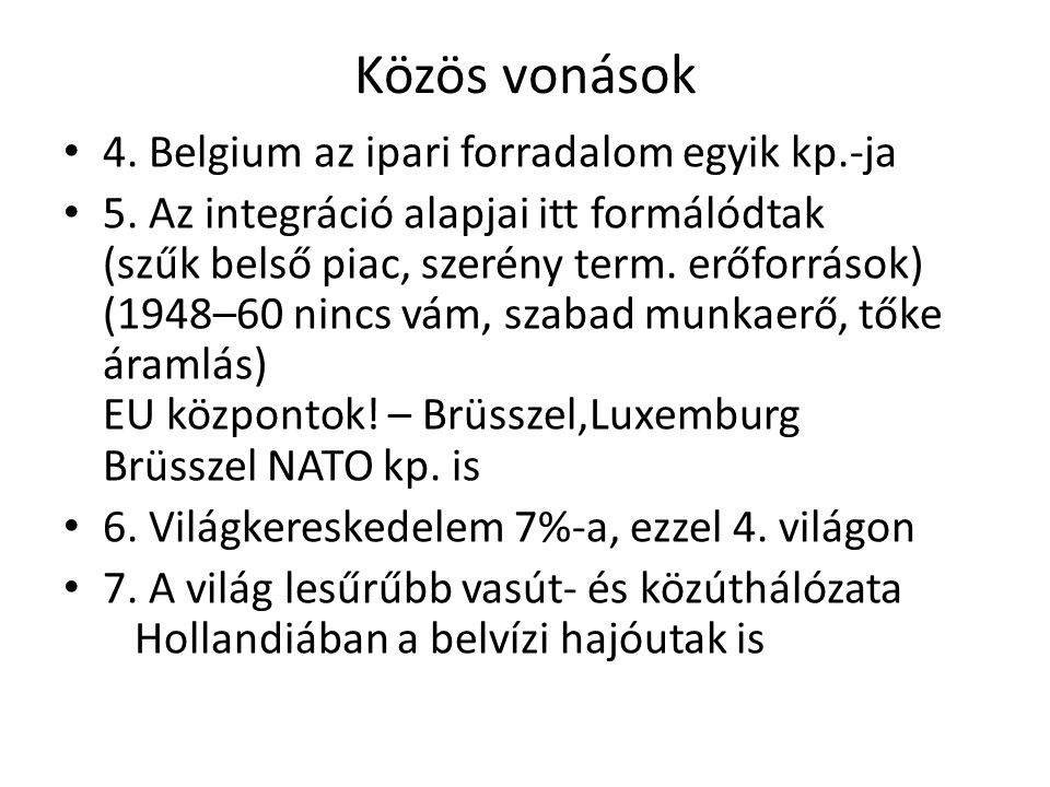 Népesség Hollandia 16,7millió (2012) Etnikailag egységes,csekély fríz kisebbség Vendégmunkás 4%,amiben nincs benne a gyarmatairól bevándorolt Belgium 11 millió (2012) Északon flamandok holland nyelvű Délen vallonok francia nyelvű lakosság Ellentétek oldása önkormányzattal Brüsszel kétnyelvű és Ardennekben németeknek is önkorm.