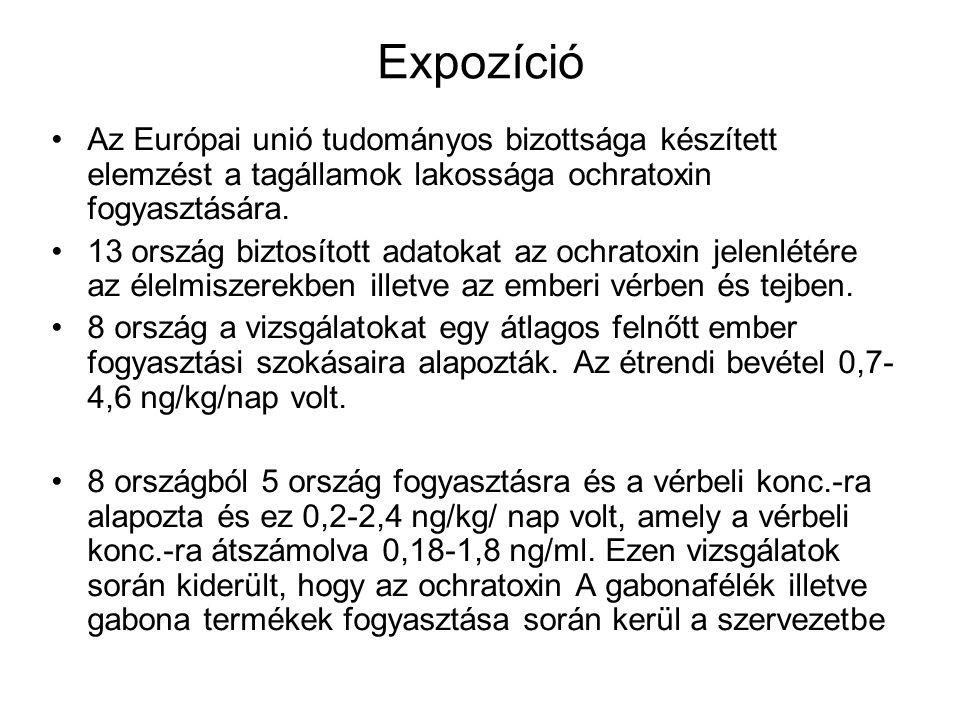Expozíció Az Európai unió tudományos bizottsága készített elemzést a tagállamok lakossága ochratoxin fogyasztására.