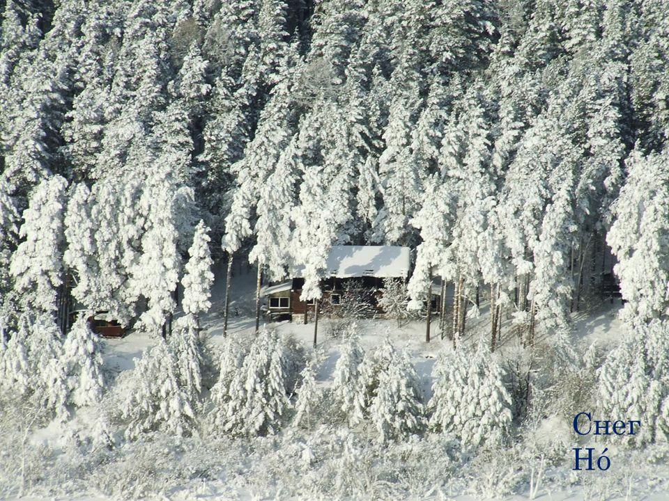 Снег Hó