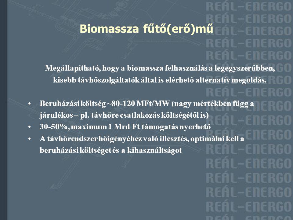 Biomassza fűtő(erő)mű Megállapítható, hogy a biomassza felhasználás a legegyszerűbben, kisebb távhőszolgáltatók által is elérhető alternatív megoldás.