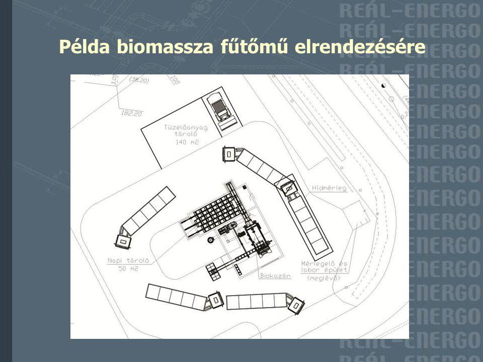 Példa biomassza fűtőmű elrendezésére