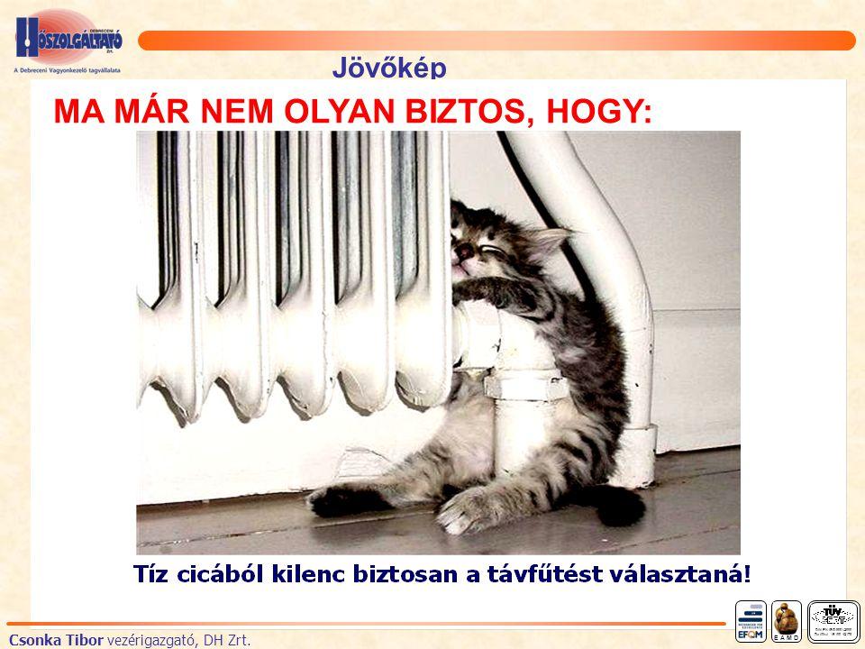 Jövőkép DIN EN ISO 9001:2000 Zertifikat 15 100 42178 É A M D Csonka Tibor vezérigazgató, DH Zrt.