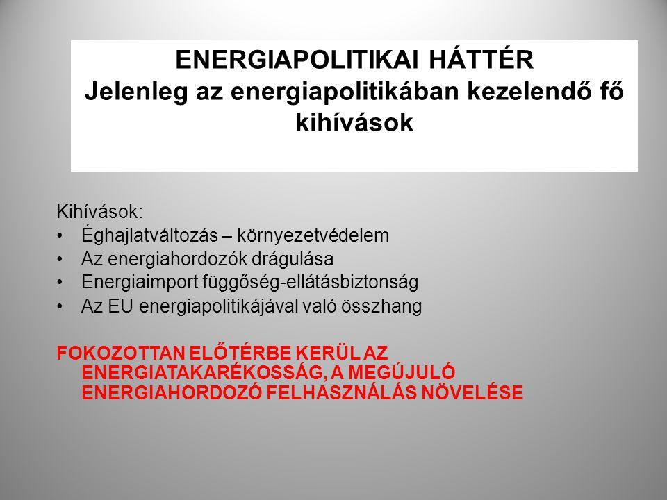 2 ENERGIAPOLITIKAI HÁTTÉR Jelenleg az energiapolitikában kezelendő fő kihívások Kihívások: Éghajlatváltozás – környezetvédelem Az energiahordozók drág