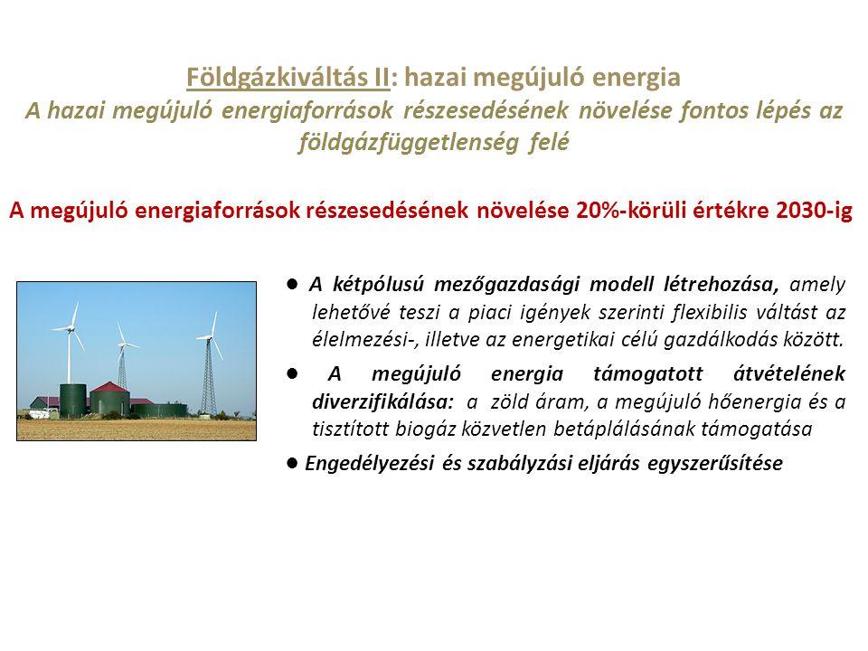 ● A kétpólusú mezőgazdasági modell létrehozása, amely lehetővé teszi a piaci igények szerinti flexibilis váltást az élelmezési-, illetve az energetika