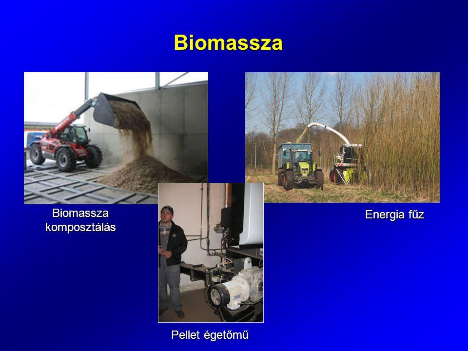 Biomassza Biomassza komposztálás Energia fűz Pellet égetőmű