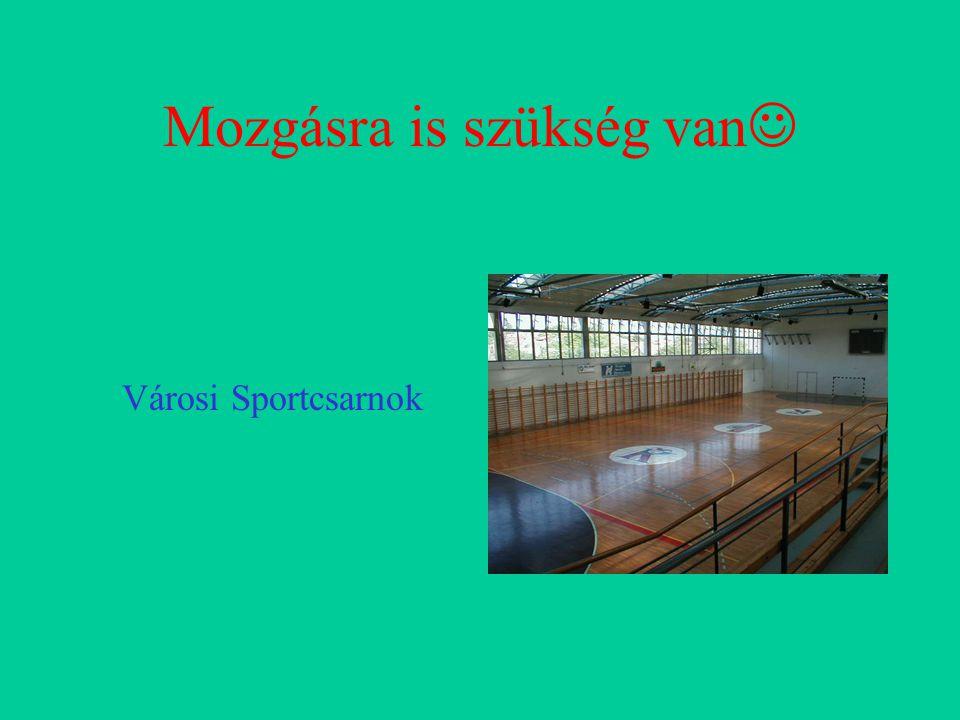 Mozgásra is szükség van Városi Sportcsarnok