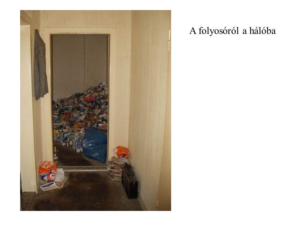 A folyosóról a nappaliba