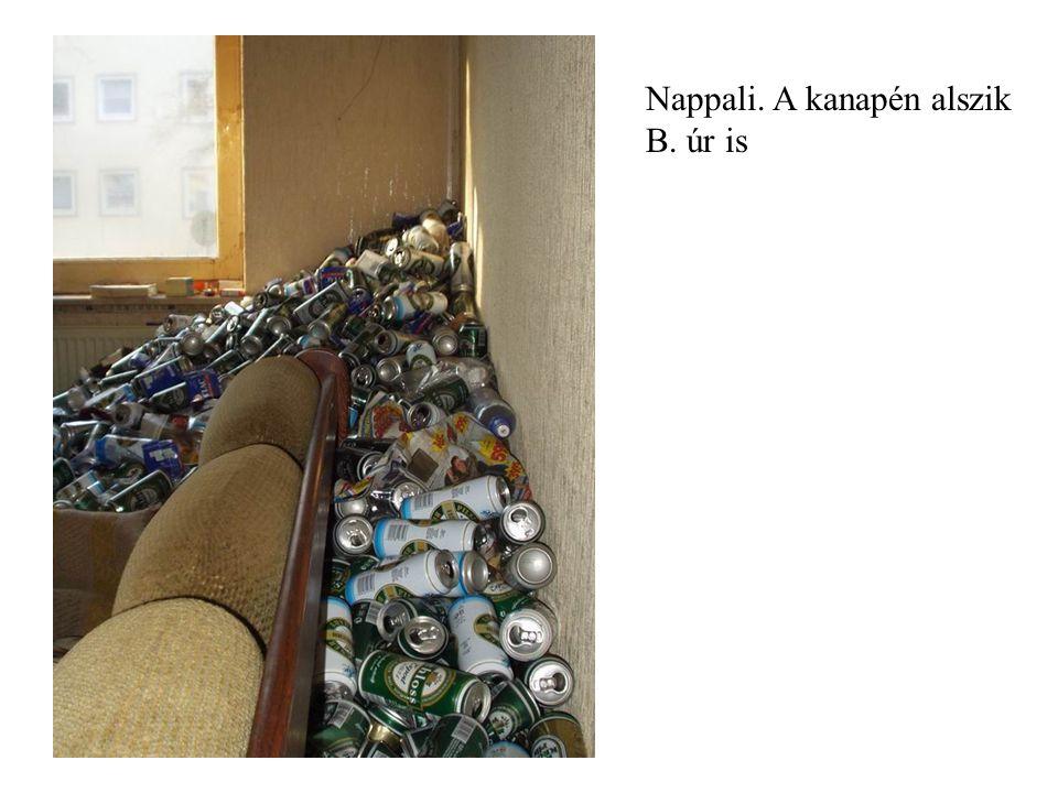 Nappali. A kanapén alszik B. úr is