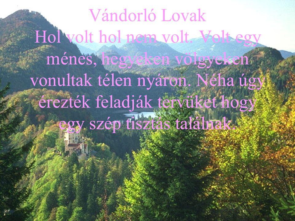 Vándorló Lovak Hol volt hol nem volt. Volt egy ménes, hegyeken völgyeken vonultak télen nyáron.