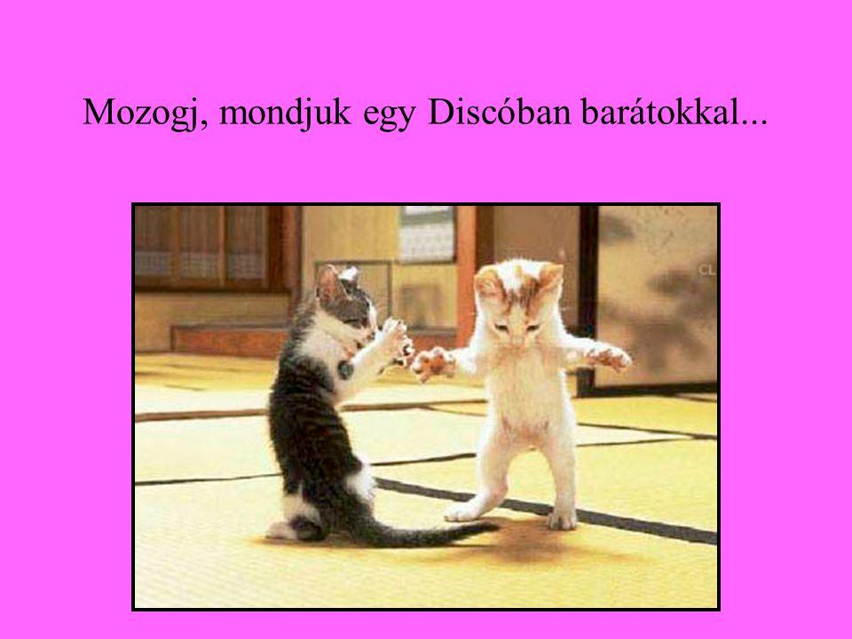 Mozogj, mondjuk egy Discóban barátokkal...
