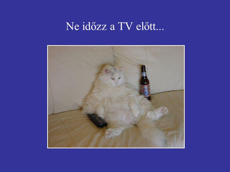 Ne időzz a TV előtt...