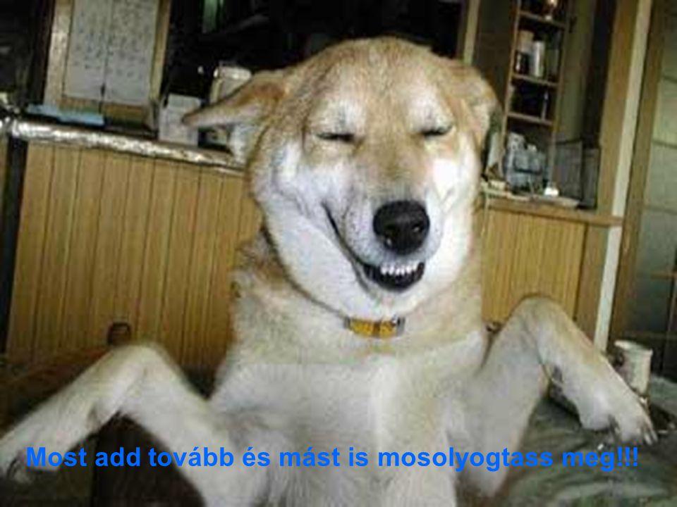 Most add tovább és mást is mosolyogtass meg!!!