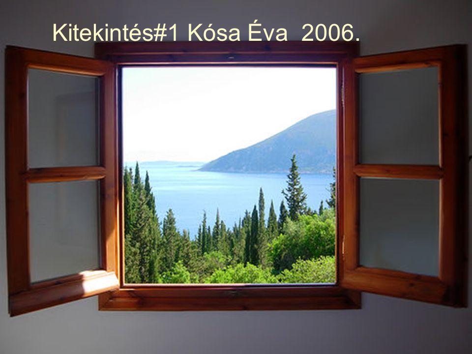 Kitekintés#1 Kósa Éva 2006.