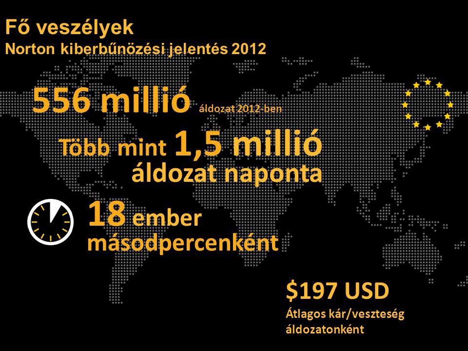 18 ember másodpercenként Fő veszélyek Norton kiberbűnözési jelentés 2012 556 millió áldozat 2012-ben Több mint 1,5 millió áldozat naponta $197 USD Átlagos kár/veszteség áldozatonként