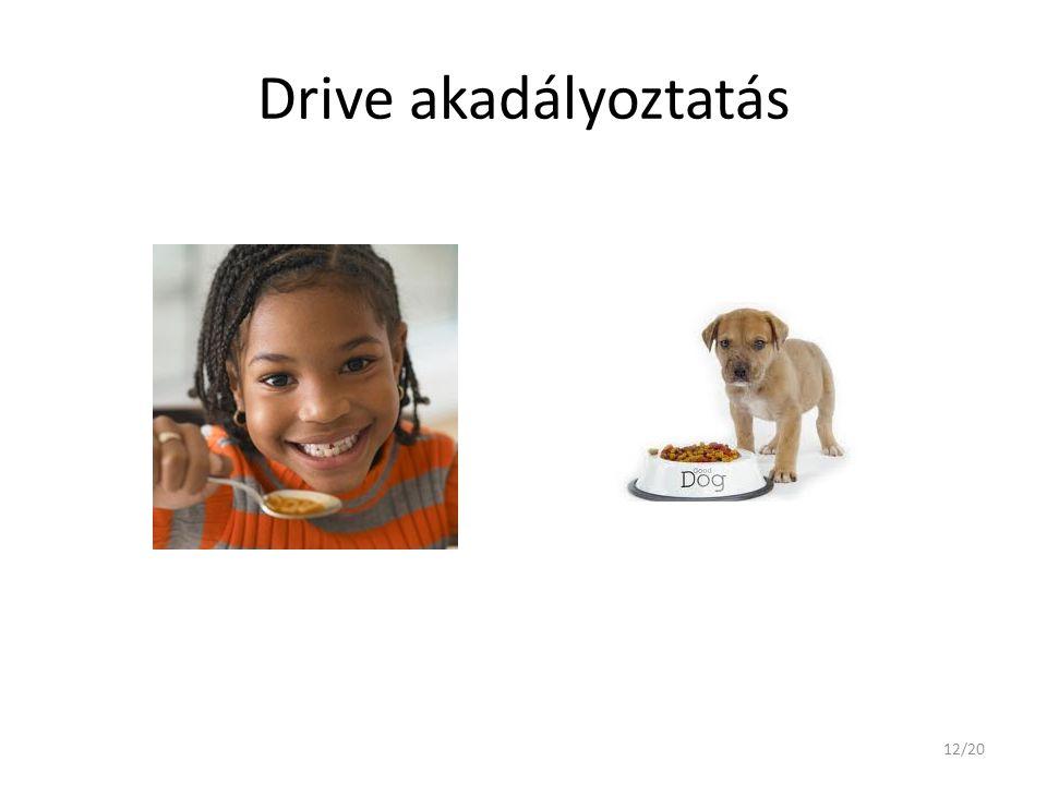 Drive akadályoztatás 12/20