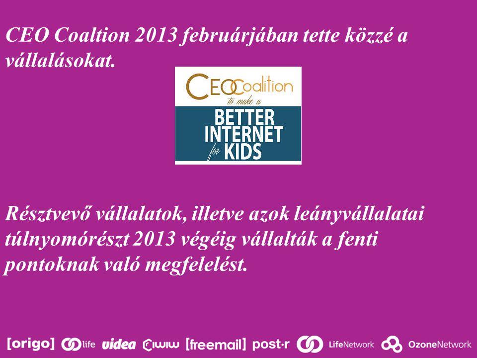 CEO Coaltion 2013 februárjában tette közzé a vállalásokat.