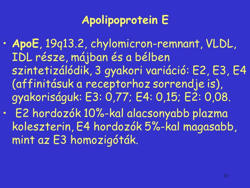 33 Apolipoprotein E ApoE, 19q13.2, chylomicron-remnant, VLDL, IDL része, májban és a bélben szintetizálódik, 3 gyakori variáció: E2, E3, E4 (affinitásuk a receptorhoz sorrendje is), gyakoriságuk: E3: 0,77; E4: 0,15; E2: 0,08.