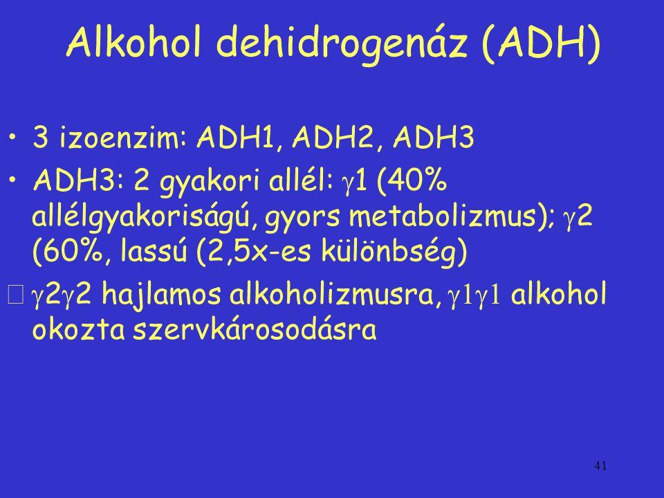 41 Alkohol dehidrogenáz (ADH) 3 izoenzim: ADH1, ADH2, ADH3 ADH3: 2 gyakori allél:  1 (40% allélgyakoriságú, gyors metabolizmus);  2 (60%, lassú (2,5x-es különbség)  2  2 hajlamos alkoholizmusra,  alkohol okozta szervkárosodásra