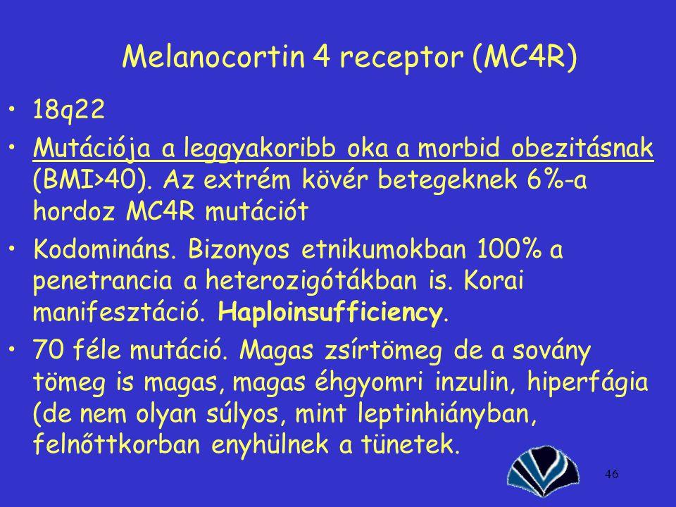 46 Melanocortin 4 receptor (MC4R) 18q22 Mutációja a leggyakoribb oka a morbid obezitásnak (BMI>40). Az extrém kövér betegeknek 6%-a hordoz MC4R mutáci