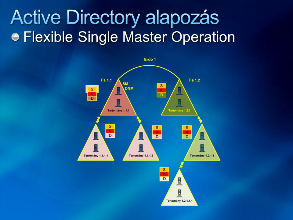Flexible Single Master Operation