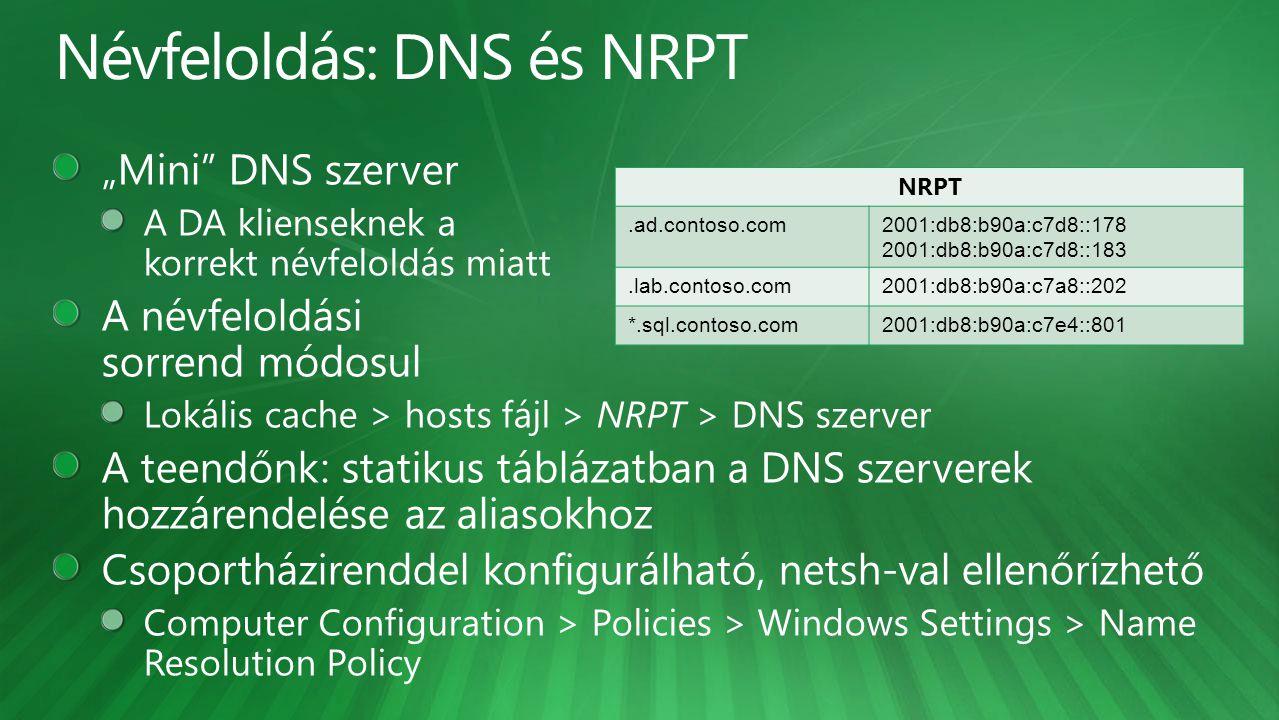 NRPT.ad.contoso.com2001:db8:b90a:c7d8::178 2001:db8:b90a:c7d8::183.lab.contoso.com2001:db8:b90a:c7a8::202 *.sql.contoso.com2001:db8:b90a:c7e4::801