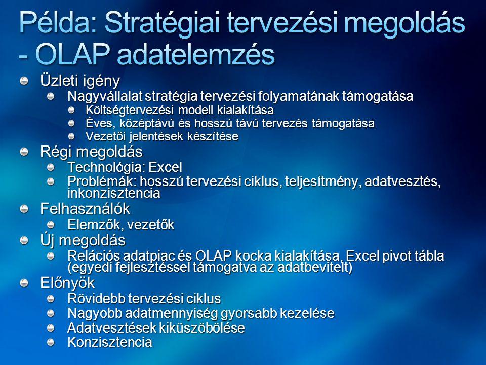 Üzleti igény Nagyvállalat stratégia tervezési folyamatának támogatása Költségtervezési modell kialakítása Éves, középtávú és hosszú távú tervezés támo