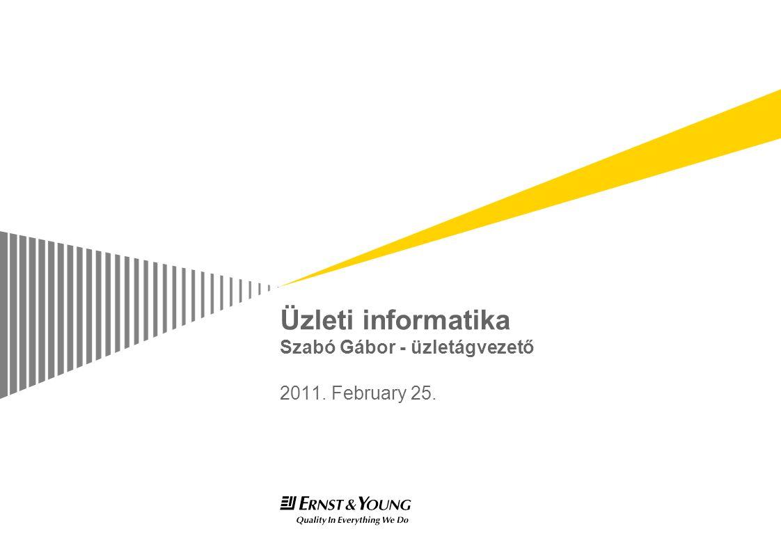 Üzleti informatika Szabó Gábor - üzletágvezető 2011. February 25.