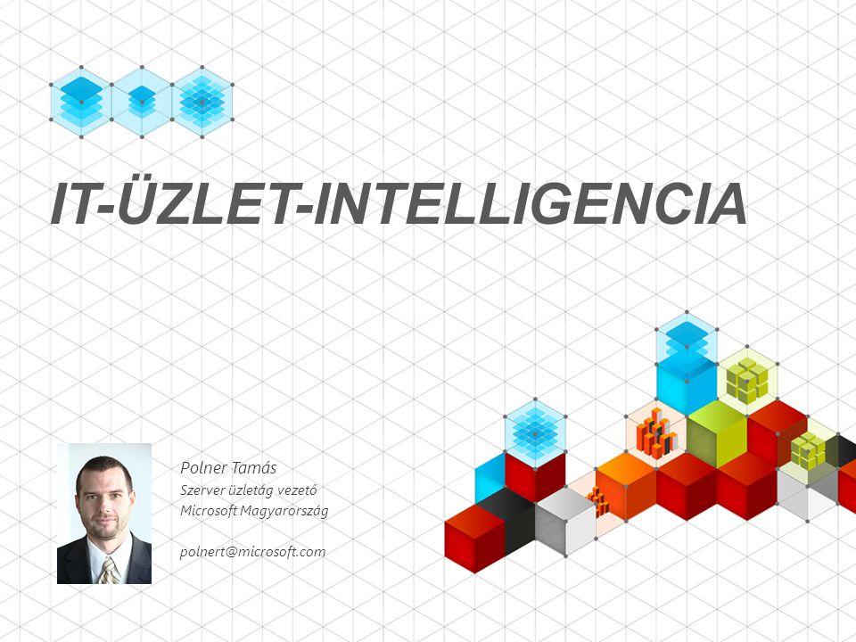 IT-ÜZLET-INTELLIGENCIA Polner Tamás Szerver üzletág vezető Microsoft Magyarország polnert@microsoft.com
