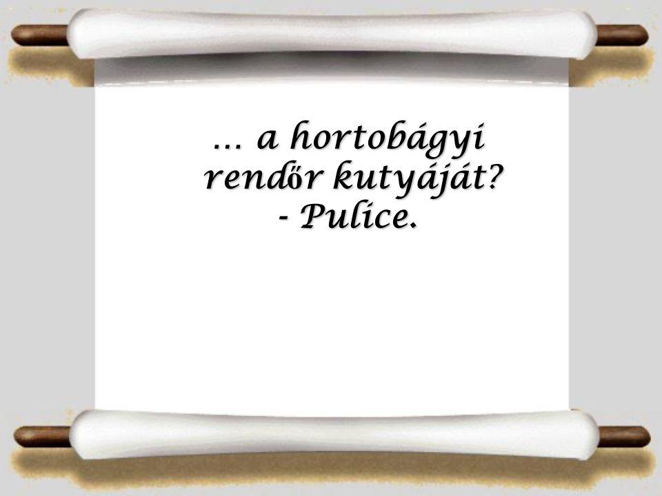 … a cigány börtönt - Aromazáró!