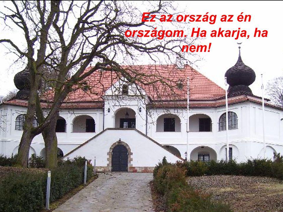 Más nyelven beszélsz, más nyelven írsz, De magyarul álmodsz, magyarul sírsz.