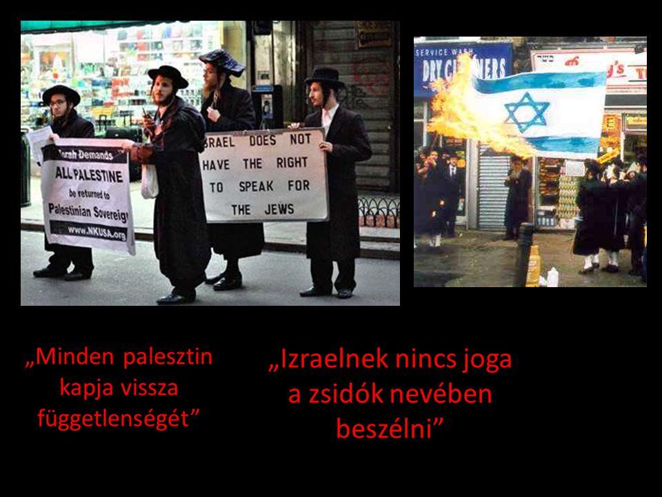 """""""Minden palesztin kapja vissza függetlenségét"""" """"Izraelnek nincs joga a zsidók nevében beszélni"""""""