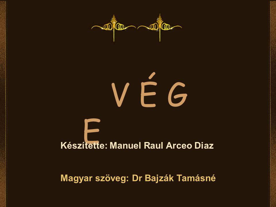 V É G E Készítette: Manuel Raul Arceo Diaz Magyar szöveg: Dr Bajzák Tamásné