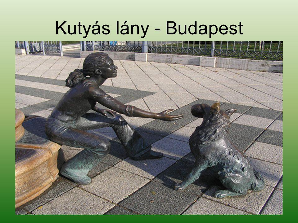 Gyere Bodri kutyám - Szeged