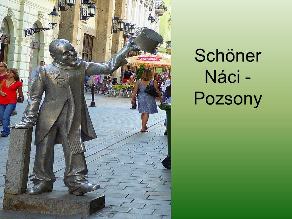 Pozsony Napóleon egyik katonája - Pozsony