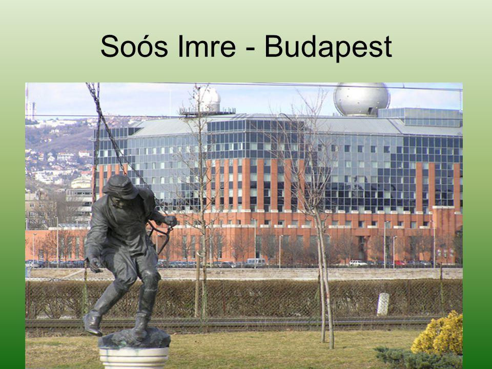 Örök szomjazó - Szeged