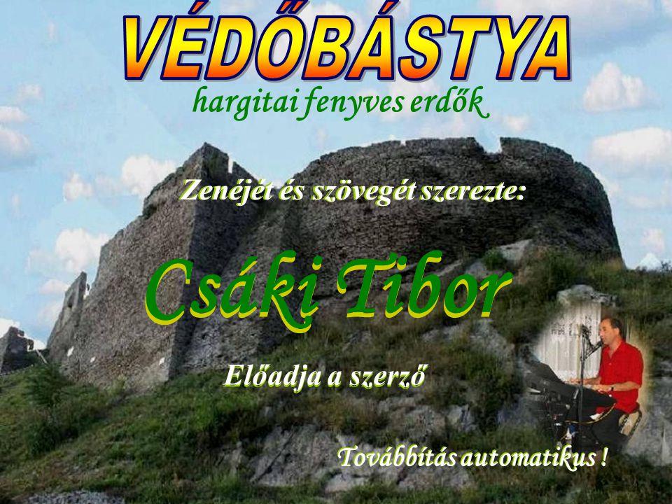 Csáki Tibor Továbbítás automatikus .