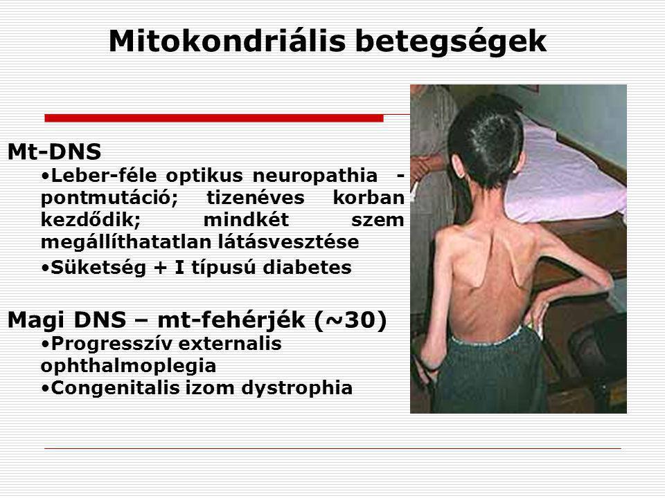 Mt-DNS Leber-féle optikus neuropathia - pontmutáció; tizenéves korban kezdődik; mindkét szem megállíthatatlan látásvesztése Süketség + I típusú diabet