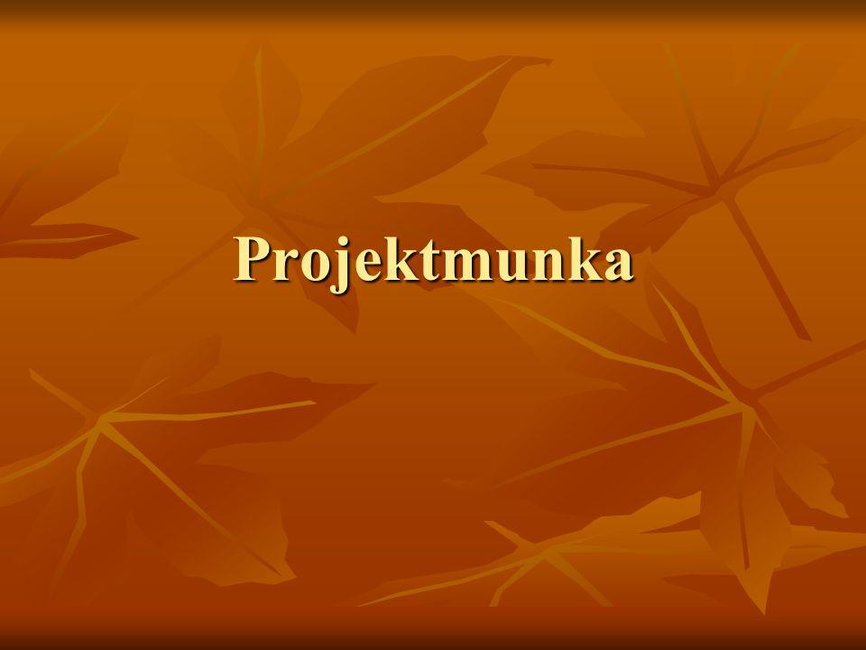 Projektmunka